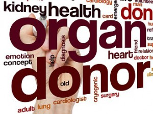 Organ donor word cloud