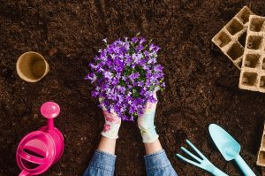 Flushing Hospital Suggests You Try Gardening to Reduce Stress